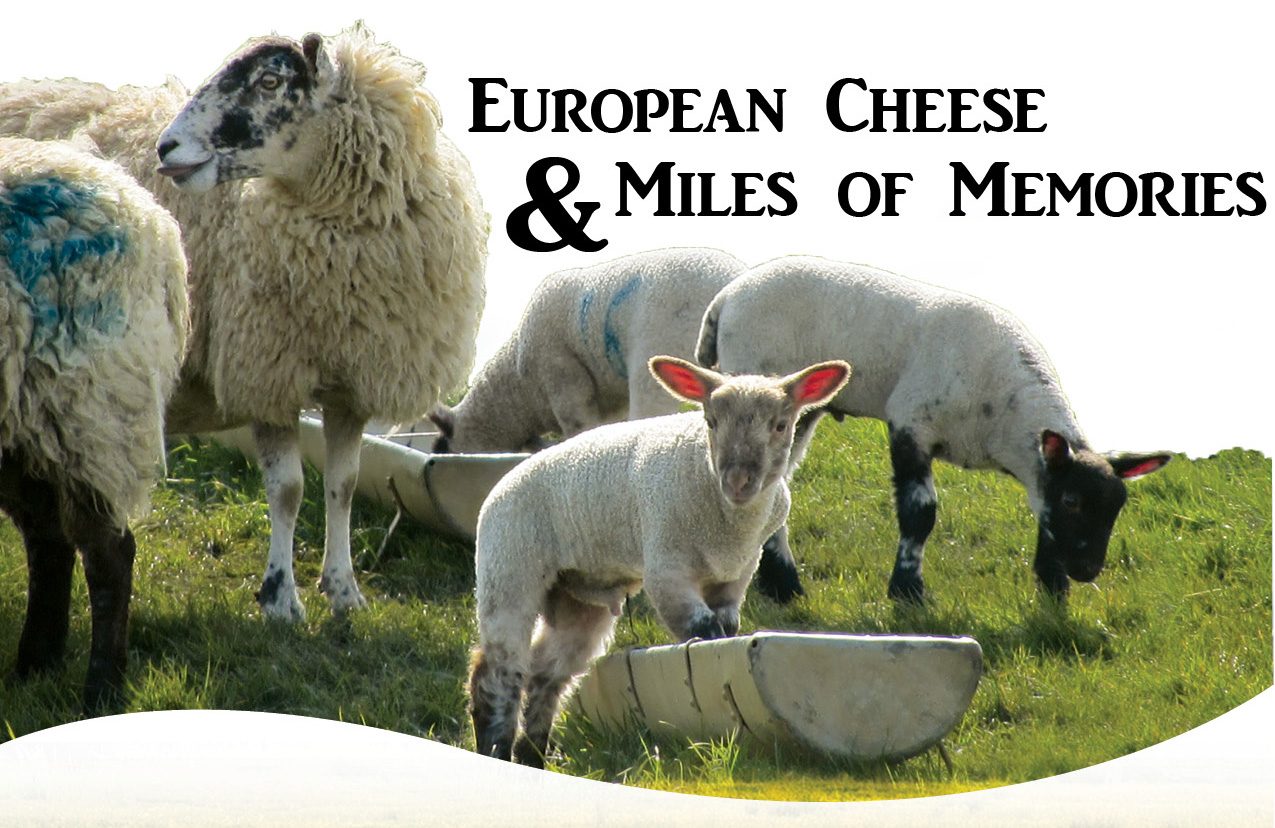 European Cheese & Miles Of Memories_Photo_Web