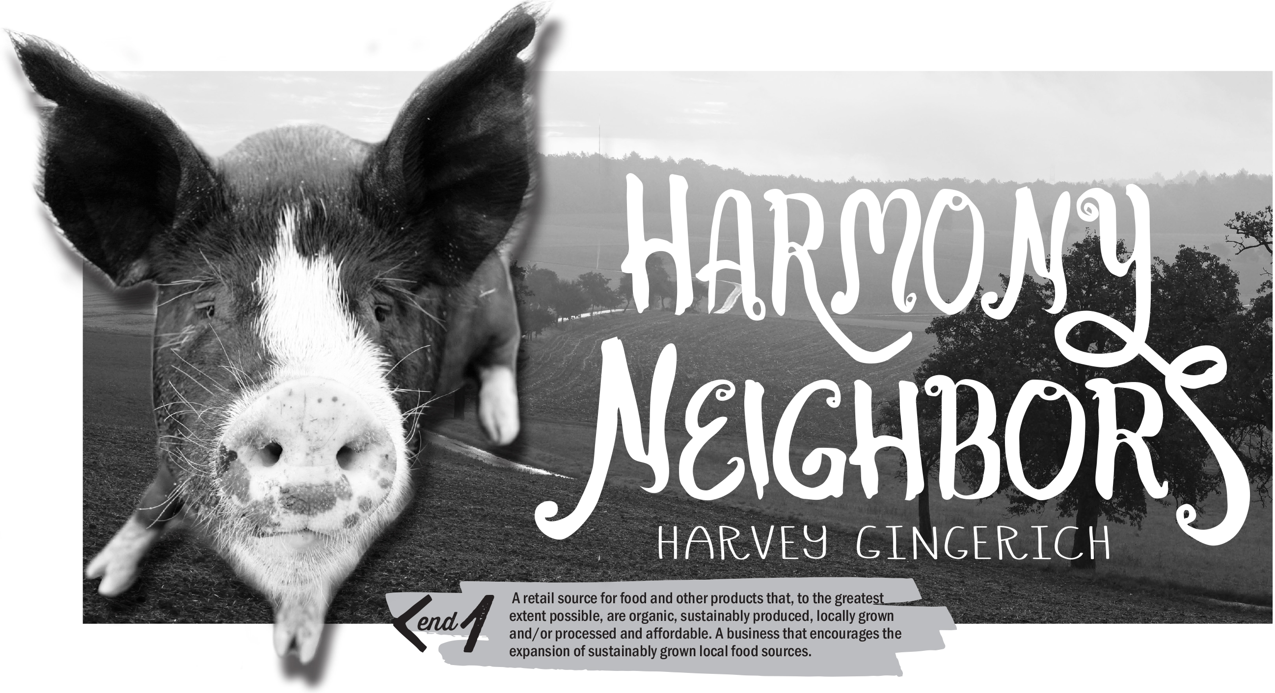 Harmony Neighbors