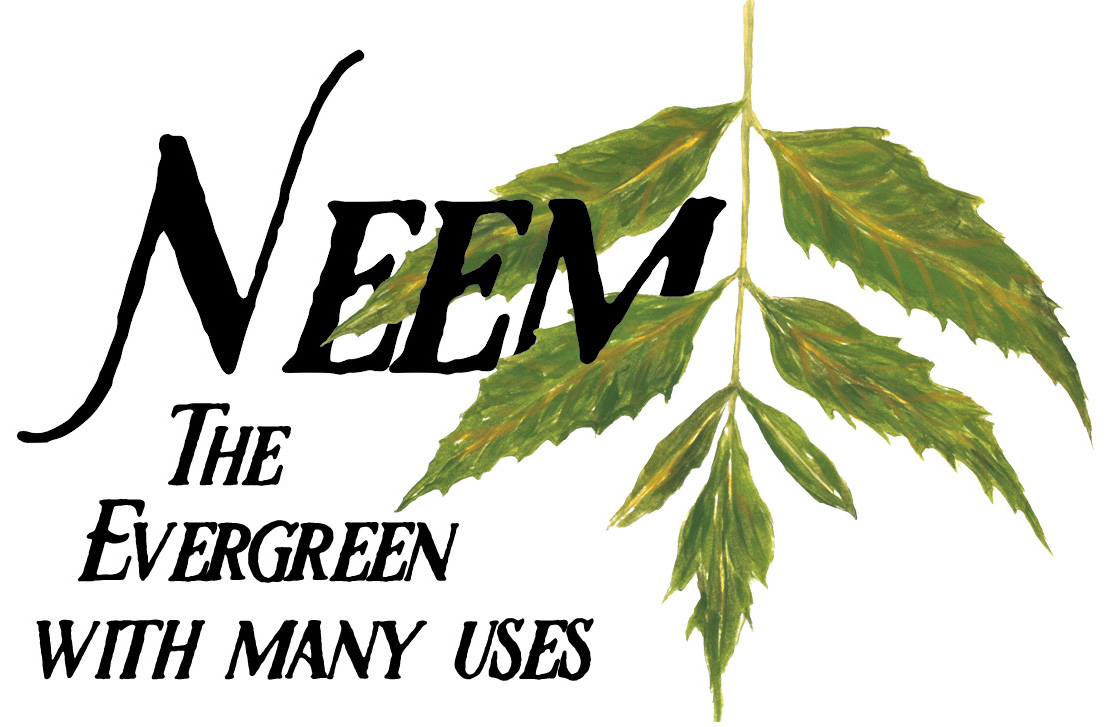 Neem_graphic_Web